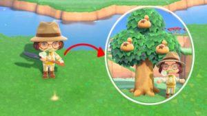 あつ森お金のなる木の誕生