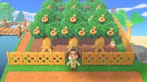 あつ森-お金のなる木